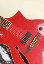 small-sim-guitar